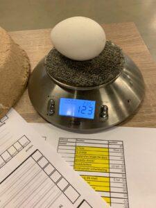 Opleidingsdag eierkeuring (6)
